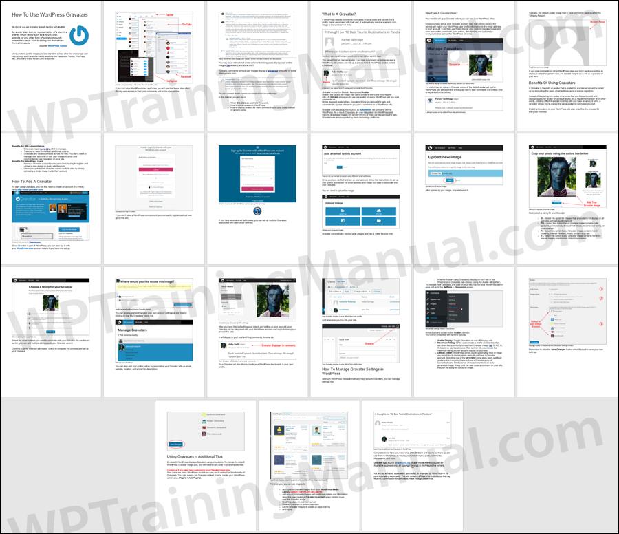 How To Use A WordPress Gravatar