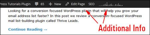 WordPress Dashboard Admin Toolbar displaying additional info.
