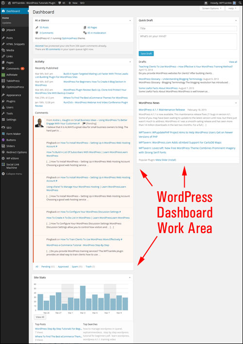 WordPress dashboard working area.