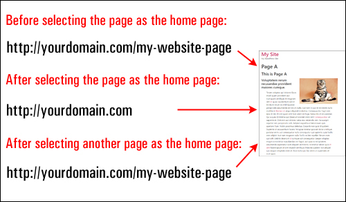 WordPress adjusts your home page URL automatically.