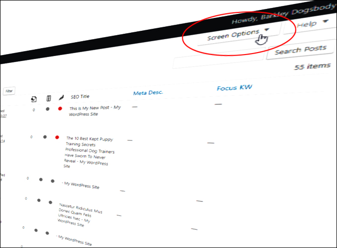 The WordPress Screen Options Tab