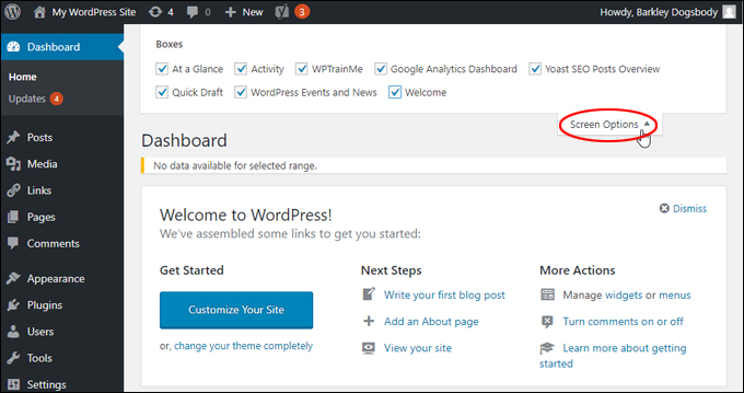 WordPress Dashboard - Screen Options Tab